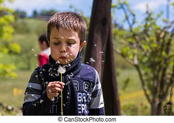Blowing Dandelion Seeds in the Wind
