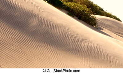 Blowing Sand Dune Moving Glass Particles South Padre Island...