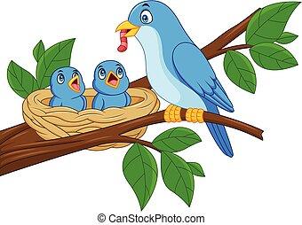 blu, alimentazione, nido, bambini, madre, uccello