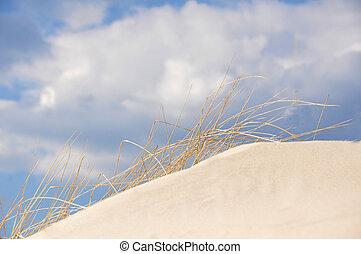 blu, ammofila, cielo, duna