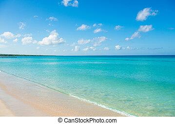 blu, appartamento, turchese, cielo, chiaro, calma, orizzonte, mare, azzurro, spiaggia, sabbioso