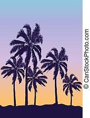 blu, arancia, palma, tramonto, albero