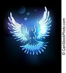 blu, ardendo, colomba