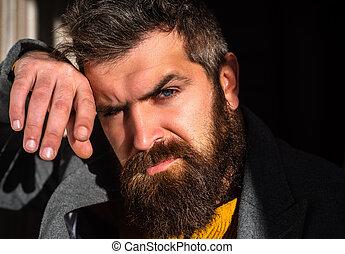 blu, barba, barbuto, moda, elegante, seriously., fiducioso, portrait., adulto, uomo, eyes., sexy, modello, maschio, tipo, man., occhiate
