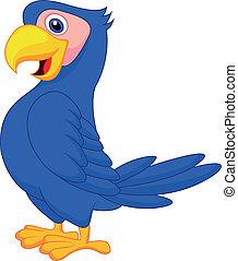 blu, carino, cartone animato, pappagallo