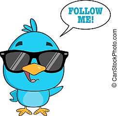 blu, carino, occhiali da sole, uccello