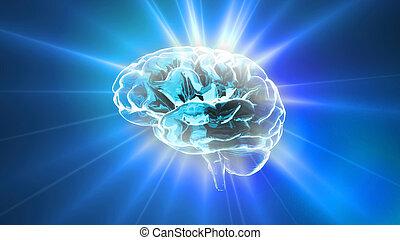 blu, cervello, brilla luce incerta