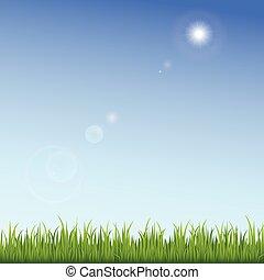 blu, cielo chiaro, sfondo verde, erba