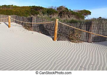 blu, dune, sabbia, erba, cielo