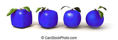 blu, evoluzione, frutta, citrico