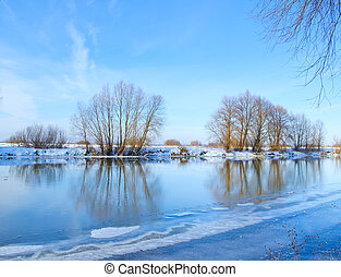 blu, fiume, cielo, banca, albero