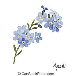 blu, flowers., nontiscordardime, ramo