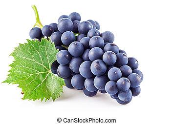 blu, foglia, uve bianche