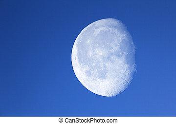 blu, grande, notte, luna, sky.