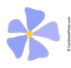 blu, margherita, elemento