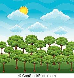blu, natura, sole, cielo, paesaggio, foresta verde, erba, nuvola