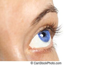 blu, occhio donna, isolato, fondo, bianco