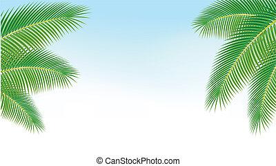 blu, palma, rami, contro, sky.