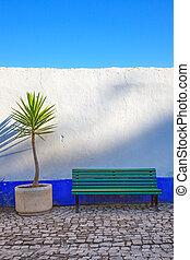 blu, pianta, dracaena, obidos, cornstalk, portugal., panca, fronte, bianco, wall.