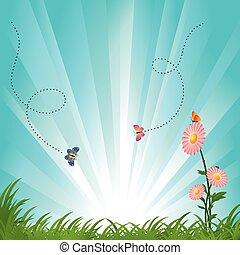 blu, primavera, cielo, farfalle, verde, campi, fiori, paesaggio