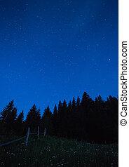 blu, scuro, cielo notte, con, molti, stars.