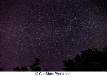blu, scuro, cielo notte, con, molti, stelle