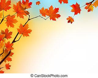 blu, sky., foglie, autunno, fondo, acero