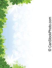blu, sky., foglie, contro, fondo., verde, acero