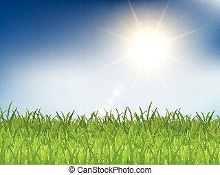 blu, soleggiato, 2303, erba, cielo