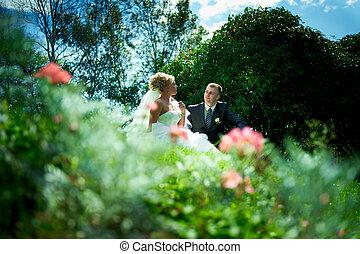 blu, sposa, sposo, cielo, fondo