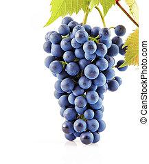 blu, uva, frutte, con, foglie, isolato, bianco