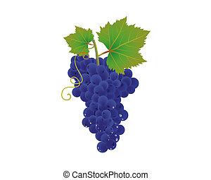 blu, uva, mazzo