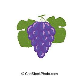blu, vettore, uva, mazzo