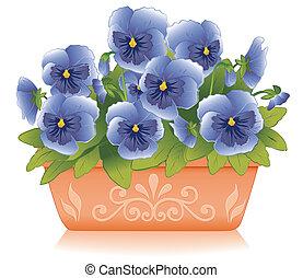 blu, viola del pensiero, fioriera, fiori, argilla