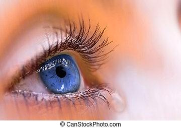blu, visione