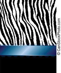 blu, &, zebrato, filigrana, zebra, ribbo