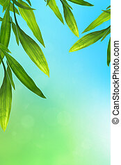 Blue and green background with bamboo leaves