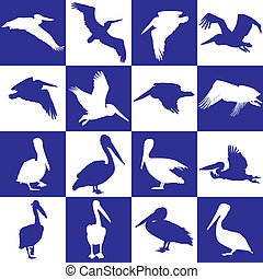 Blue and white background with peli