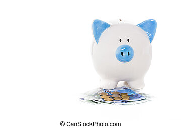 Blue and white piggy bank standing on euro notes and coins