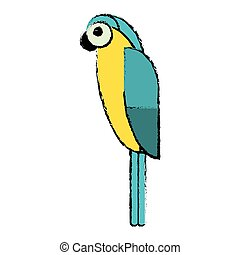 blue and yellow macaw parrot brazil sketch