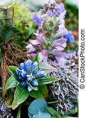 blue flower arrangement for funeral