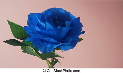 Blue artificial rose flower underwater moving