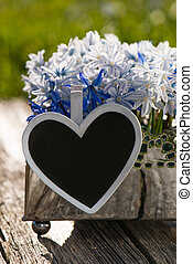 Blue asterisk on wooden background