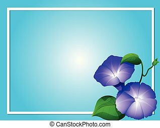 Blue background template with morning glory flowers...