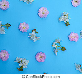 blue background with blooming white and pink flowers