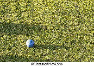 Blue ball with green grass