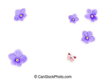 Blue beautiful flowers isolated on white background and butterfly