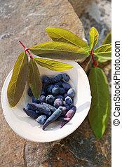 Blue berries of honeysuckle in a bowl