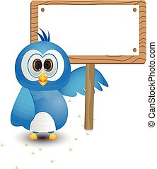 blue bird pointing