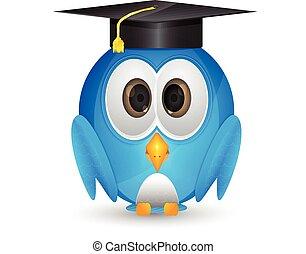 Blue bird with graduation cap